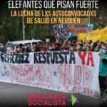La lucha de lxs autoconvocadxs de salud en Neuquén